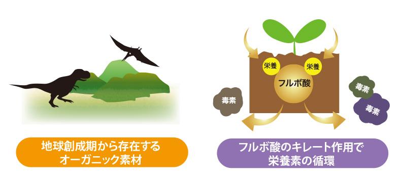 フルボ酸はオーガニック素材でキレート作用
